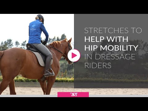 Stretches To Help With Hip Mobility In Dressage Riders