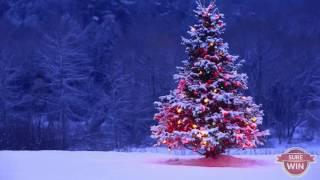 Chúa Ra Đời | Nhạc Thánh Ca | Nhạc Noel