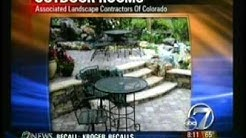 Outdoor Living Trends (ABC7)