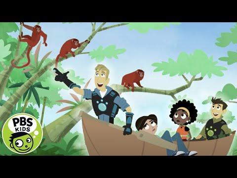 Wild Kratts | Amazon Animals! | PBS KIDS
