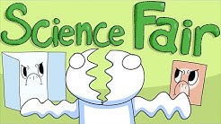 My Thoughts on the Science Fair (I didn't like it)