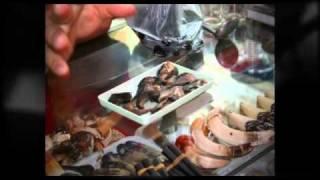 Bear bile in Asia - TRAFFIC investigates