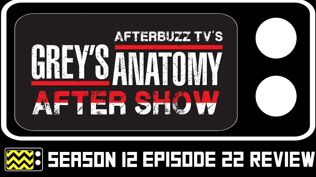 Grey\'s Anatomy Season 12 Episode 22 Review & After Show | AfterBuzz ...