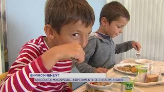 Environnement : les bons gestes du tri sélectif dès l'école