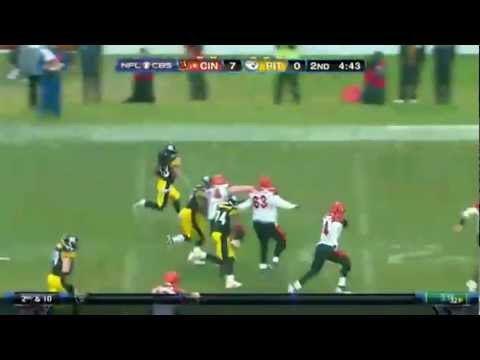 Top 5 Troy Polamalu Interceptions