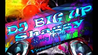 DJ Big Up X Shaggy - Ready fi di ride (Remix)