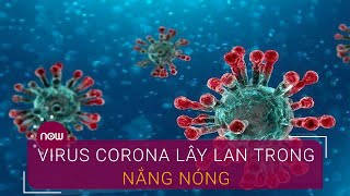 Thời tiết nắng nóng, virus Corona có khả năng lây lan không? | VTC Now