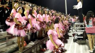 North Garland High School Band And Color Guard Pinkout Game
