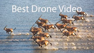 Best Drone Video of 2018 and 2019 in 4K UHD