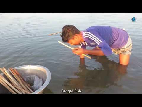 Lol Hook Fishing | Asian Bengali village Fisher Boy | (Taki Fish) Fishing