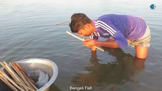 Lol Hook Fishing Asian Bengali village Fisher Boy (Taki Fish) Fishing