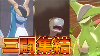 三闘集結!「オン」がつくポケモンたちの戦い!【ポケモン剣盾】