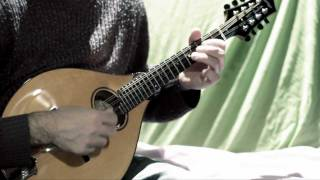 Mandolin tunes. Tarbolton (Irish reel)