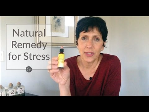 Stressed Or Anxious? Here's A Natural Remedy To The Rescue!