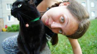 Najlepszy kot na świecie