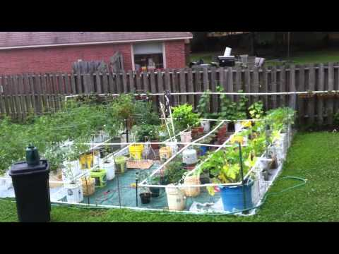 How to build a home made pvc drip irrigation system for for Home garden drip irrigation design