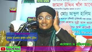 ইমাম আবু হানিফা রাঃ সম্পের্ক, মাওঃ আব্দুল হালিম ভূইয়া Maulana Abdul Halim Bhayan!