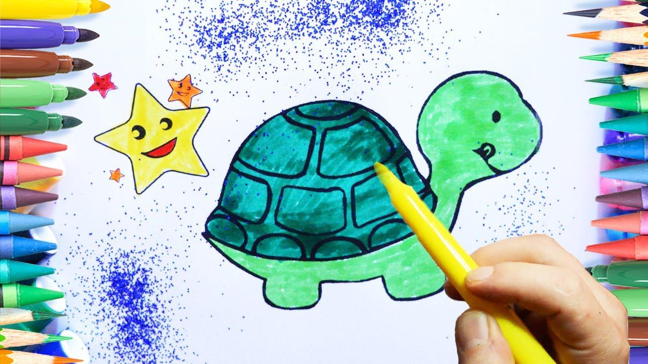 Kaplumbağa Boyama Sayfasi çocuklar Için Youtube