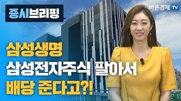 [증시브리핑] 삼성생명 삼성전자 주식 팔아서 배당 준다고?!_한애솔 아나운서
