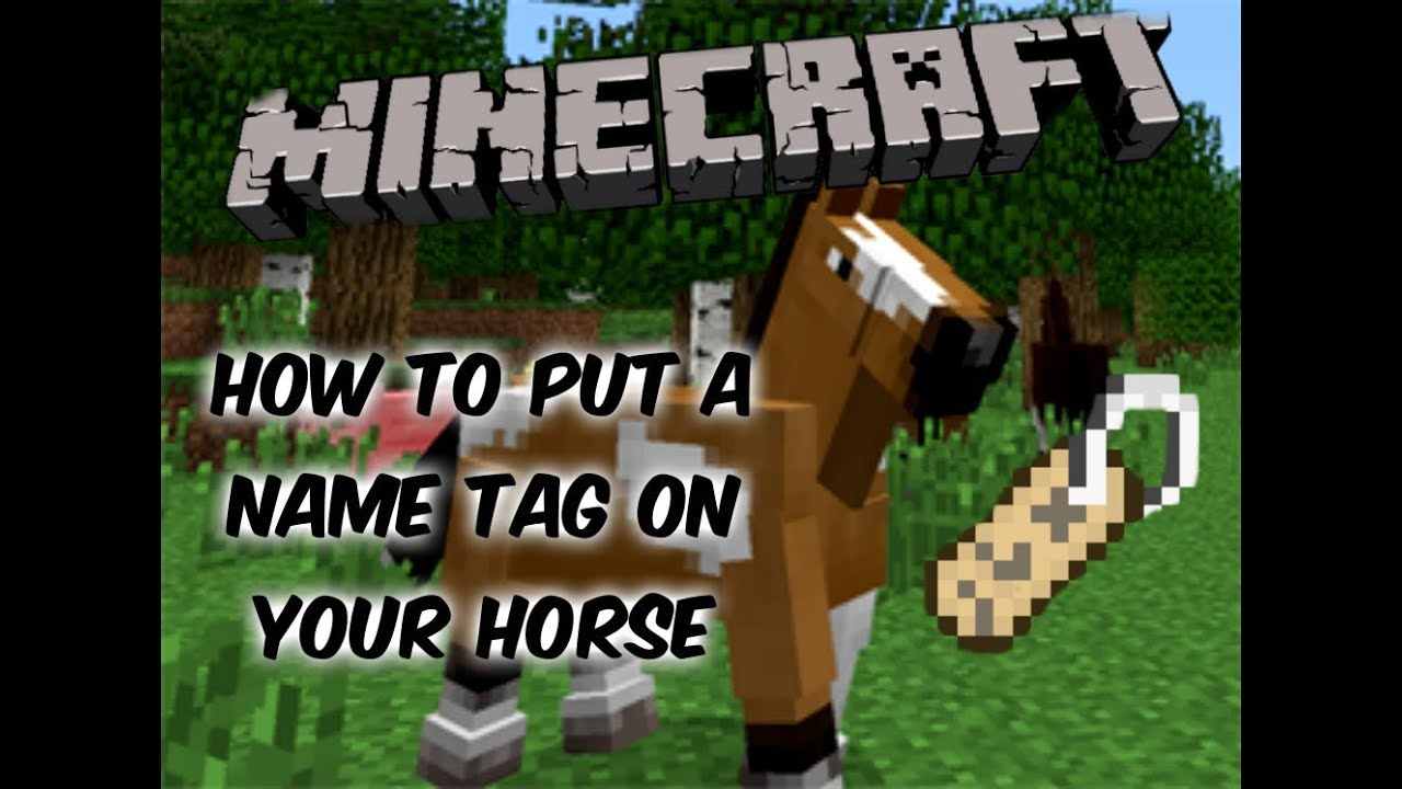 Minecraft  How To Put A NameTag On Your Horse