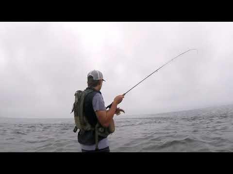 Fishing The Waitahanui