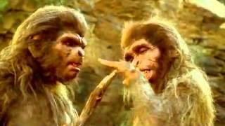 La odisea de la especie   Homo habilis