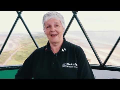 Lin Sunderland | Yorkshire Wildlife Trust