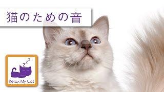 それは癒しの音楽であなたの猫を緩和するのに役立ちます