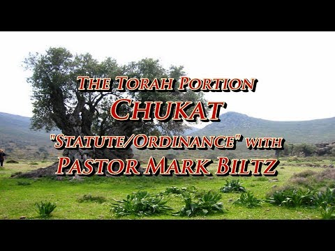 Saturday, July 1, 2017: Statute (Chukat)