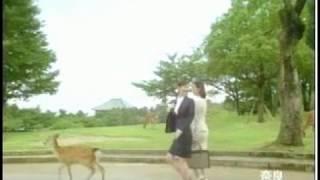 2010/11/27OA 出演:森脇英理子、岩田さゆり、竹中友紀子 ♪ニッセイ♪ ♪...