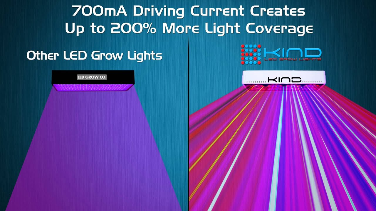 grow light best plant consumer led lights indoor oxyled runner hydroponic