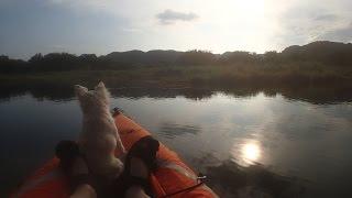カヤックの上の 幸福な時間 sevylor quikpak k5 kayak