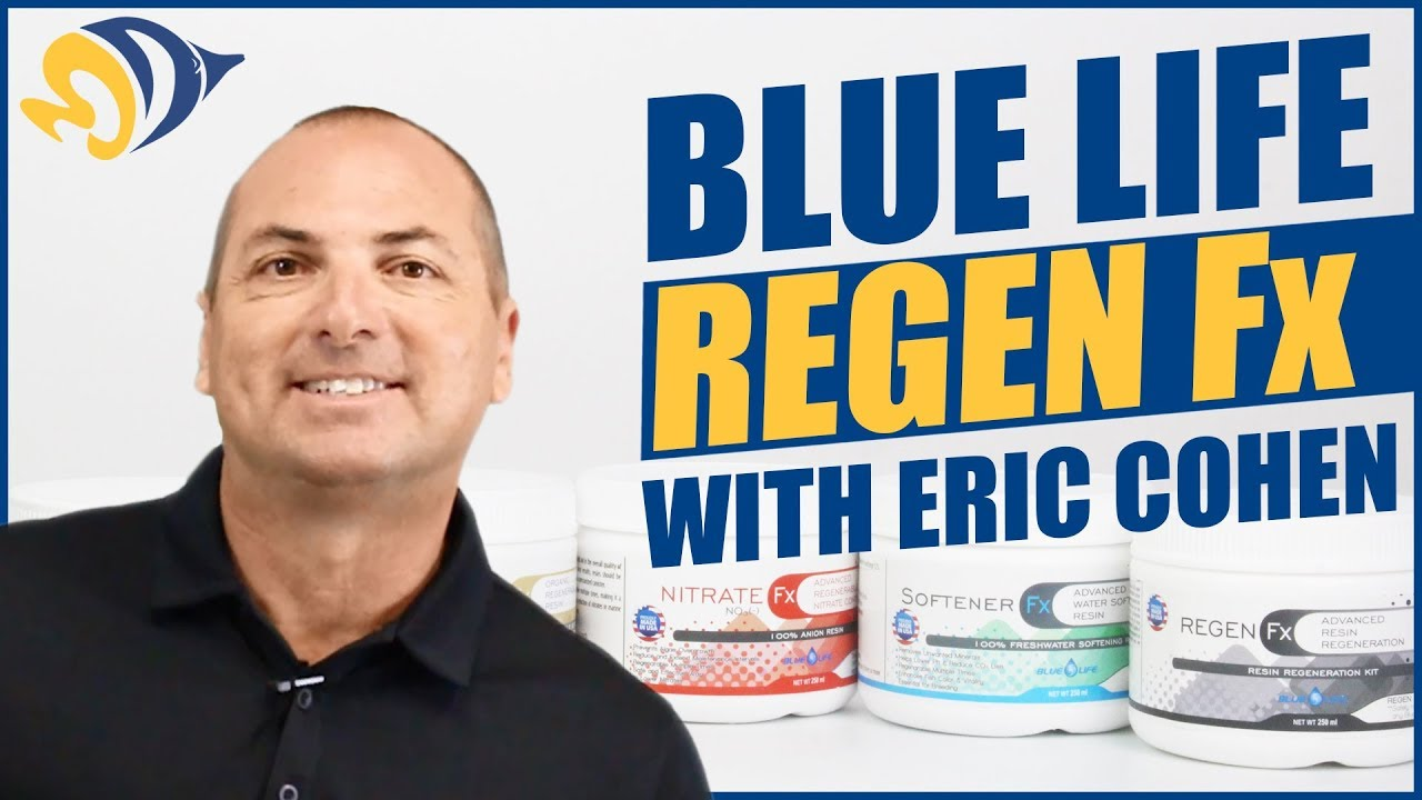 How to Regenerate Your Filter Media (6x or more!) featuring Eric Cohen from Blue Life USA Thumbnail