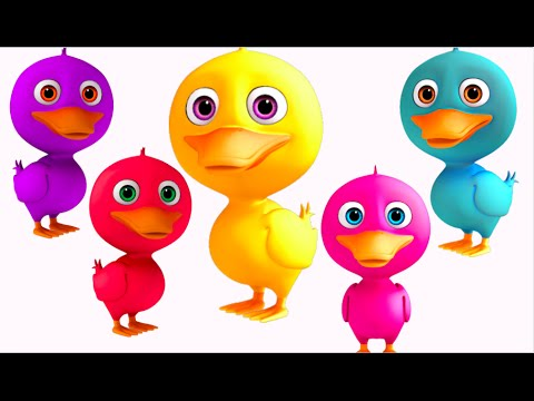 Five Little Ducks Went Out One Day | 5 Little Ducks | Nursery Rhymes Collection 3D