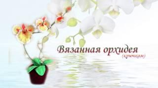Орхидея крючком. Вязанные цветы