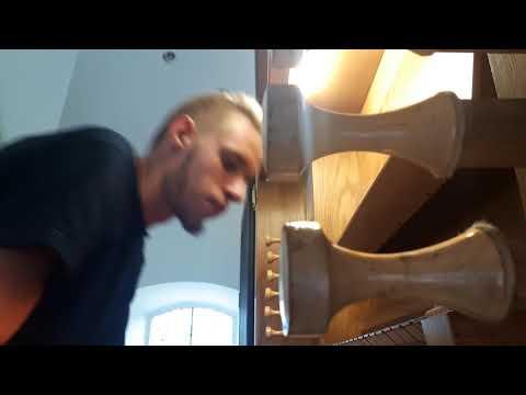 Der Klang einer plötzlichen Melodie (Plenum)