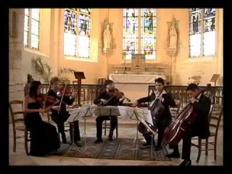 SCHUBERT (1/6): String Quintet in C major - I. Allegro ma no troppo