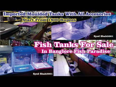 Imported Fully Setup New Aquarium For Sale In Banglore