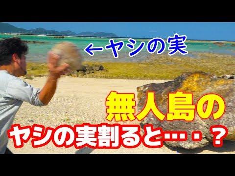 無人島で見つけたヤシの実ジュースが飲みたいんだ!#お塩参戦サバイバルカットシーン