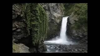 Maqomed Zaqatala-Terlan Dardoqqazli