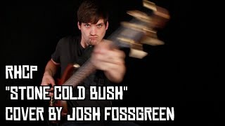 BASS Cover - Stone Cold Bush by Red Hot Chili Peppers