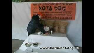 XотьDog Корма для самых близких.(После 2х лет исследований, более чем на 20 породах собак, при постоянном кормлении, можем утверждать,..., 2012-04-04T15:38:03.000Z)