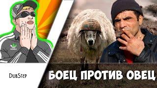 Кама Пуля - Боец против овец