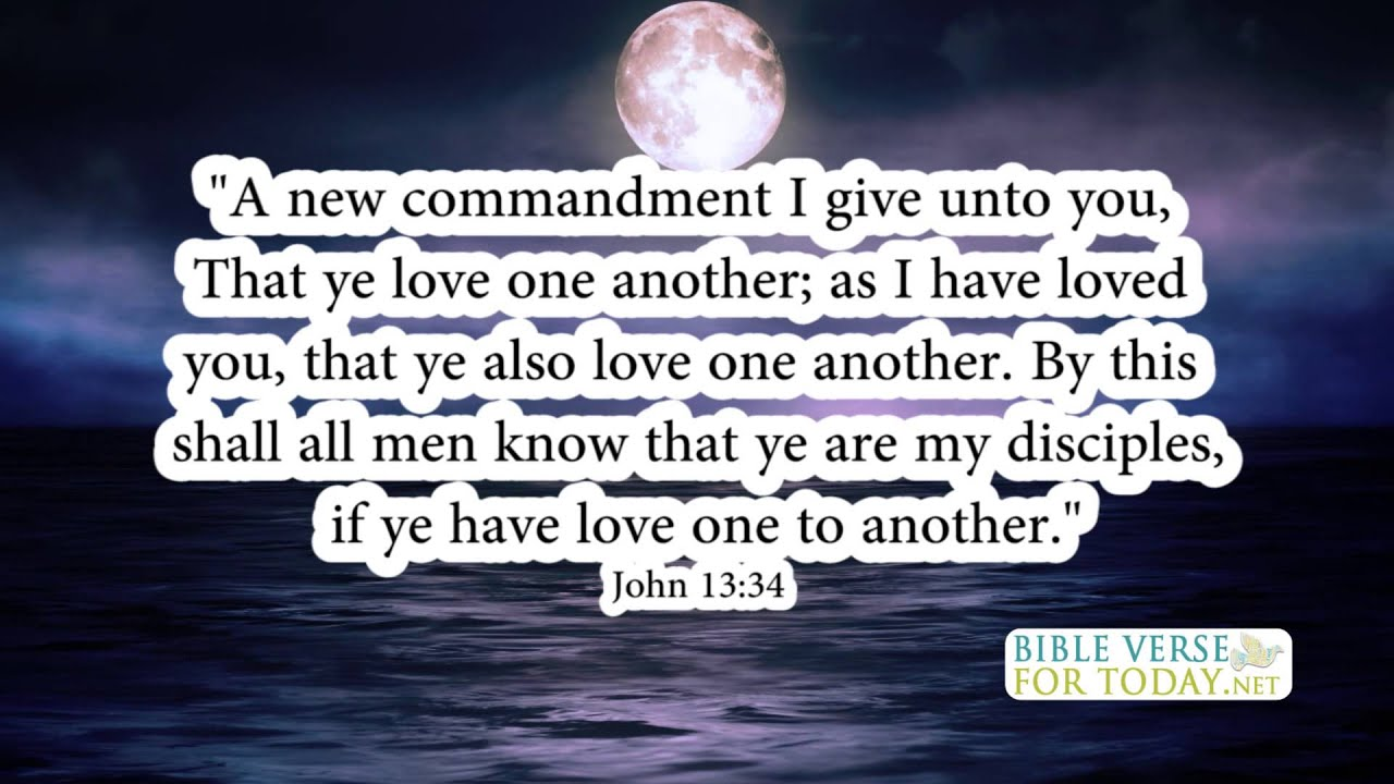 Life Changing Bible Quotes Fascinating Favorite Bible Verses John 1334  Bible Verse  Daily For Quotes