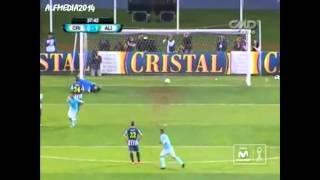 Sporting Cristal Campeón 2014, 17 toques a gallinas y sub campeonato copa libertadores