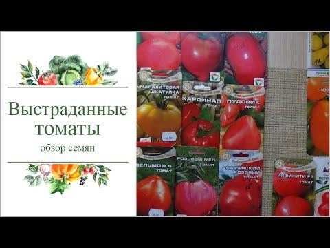 'Выстраданные' сорта томатов для теплицы 2018г.