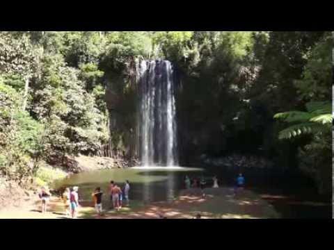 The Millaa Millaa Falls - Atherton Tableland,  Far North Queensland, Australia