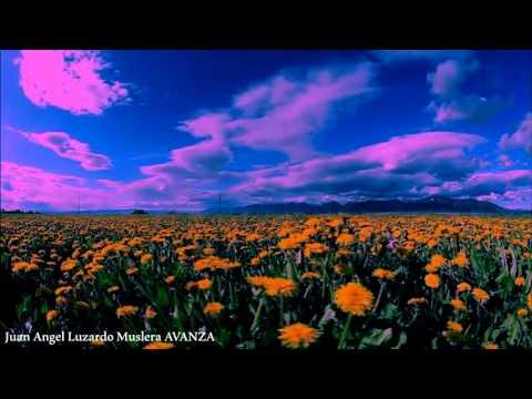 Reflexiones de vida Poema (Paisajes en Movimiento HD)