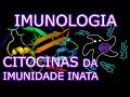 Aula: Imunologia - Citocinas da Imunidade Inata (2/3) | Imunologia #10