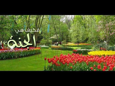 اجمل تلاوات من وصف اهل الجنه الشيخ منصور السالمي Hqdefault